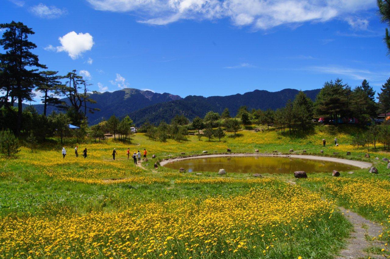 圖/福壽山農場提供