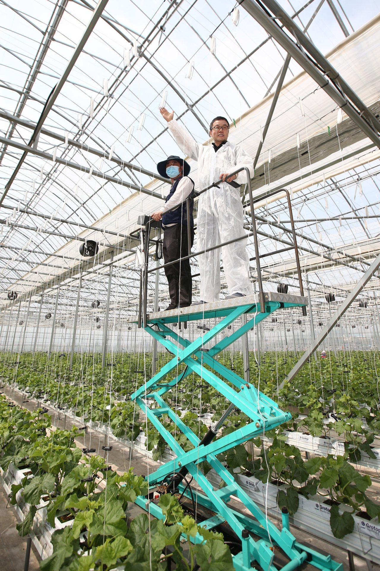 seedream是開始試用大數據的智慧農場,可栽培期間是一般農場的兩倍,生產量是...