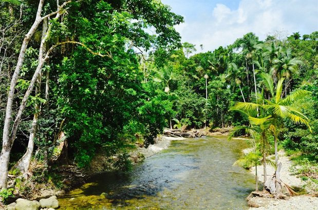 澳洲丹特里生態水療別墅酒店入住水療樹屋。圖/KAYAK提供