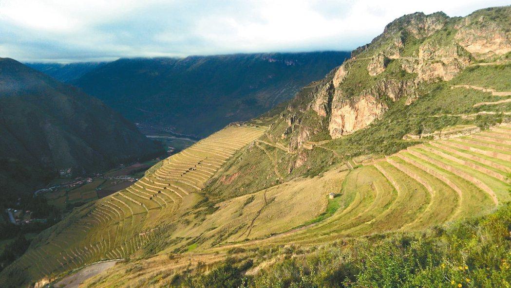 秘魯持續復耕老祖宗所開墾的梯田,作為因應極端氣候的解方之一。 記者董俞佳/攝影