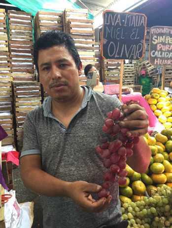 葡萄等蔬果受氣候炎熱影響,產量減少。記者董俞佳/攝影