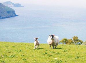 北愛爾蘭上,一個溫柔敦厚、像水晶一樣澄淨的地方。 吳緯婷攝影