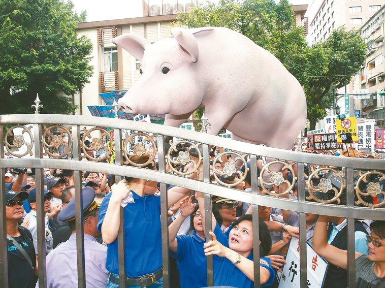 我國含瘦肉精豬肉進口的貿易議題,國民黨民代前往抗議。 聯合報資料照片