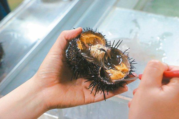 禮文島、利尻島海膽產量多,開辦剖海膽體驗。 記者沈佩臻/攝影