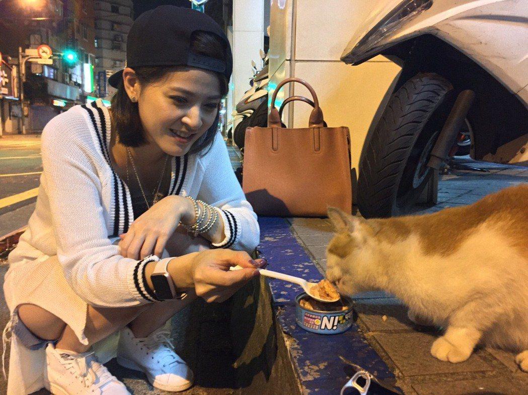 蘇晏霈平常會照顧流浪貓狗。圖/民視提供