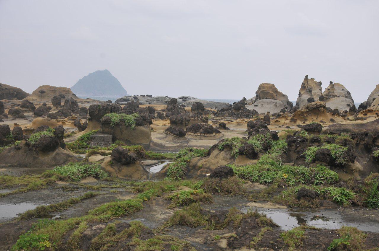 基隆和平島公園將首辦音樂祭,有珍貴海蝕地形,充滿想像。記者游明煌/攝影