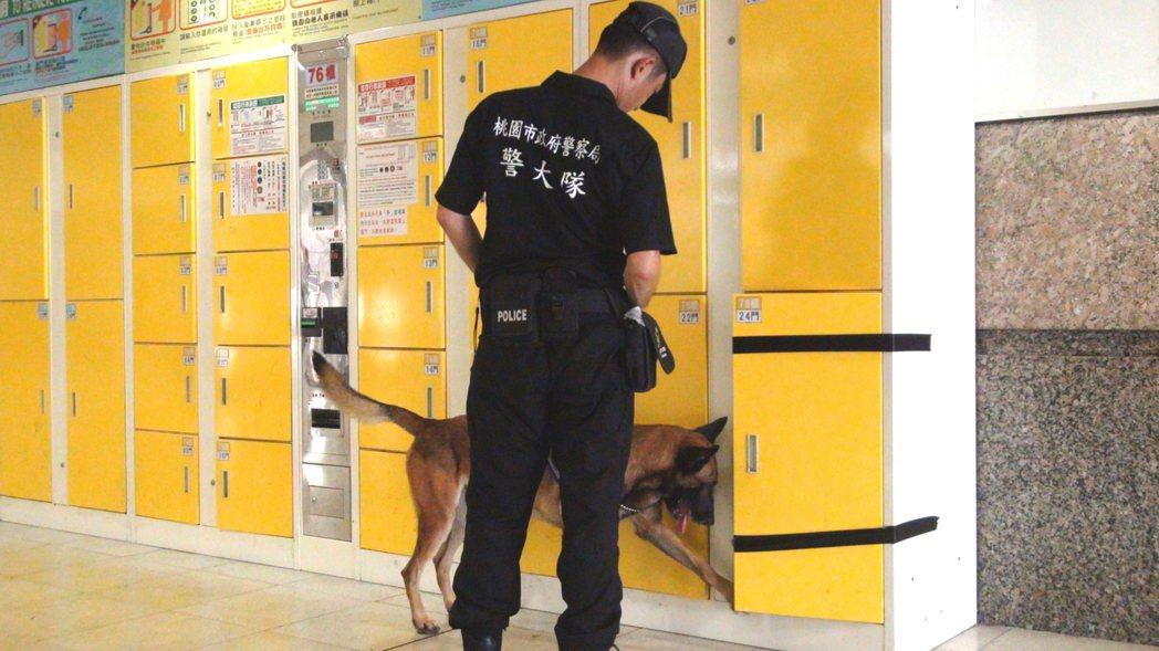 新北市警犬隊偵爆犬展現超強嗅覺,在板橋三鐵共構車站舉辦世大運交通運輸反恐演練中,...