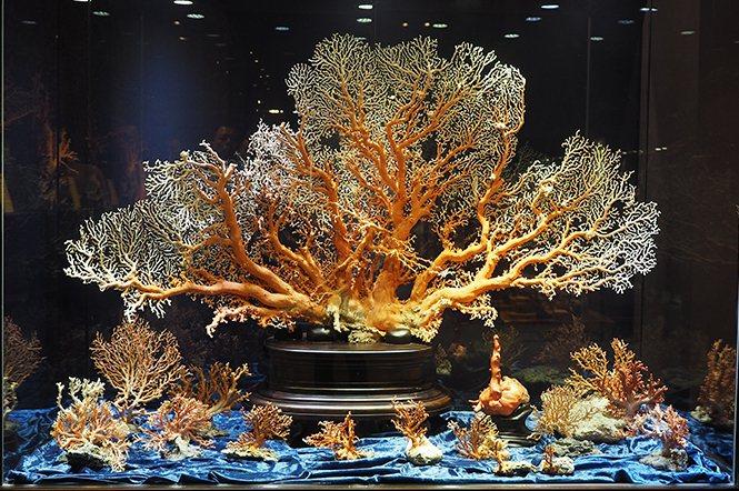 世界最寬桃紅寶石珊瑚海景。這件珊瑚海景寬165公分、高95公分,可說是鎮店之寶。...