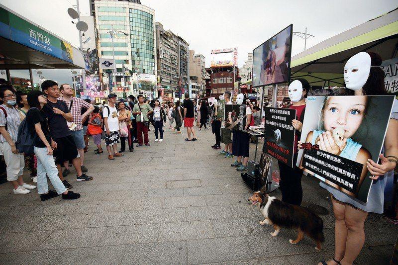 在台灣的各個角落,尚有一群年輕人,自己出錢出力 來推廣蔬食及動物平權的理念。