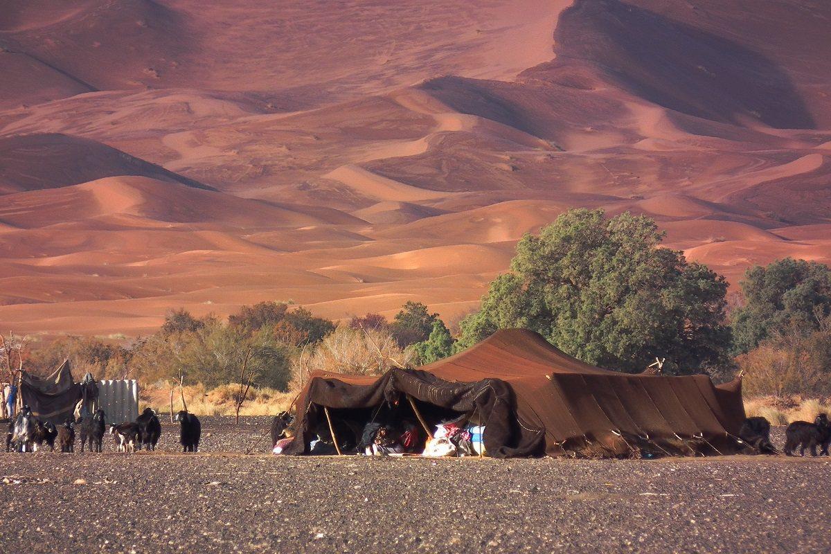 遊牧民族搭帳篷落居沙漠深處。 蔡適任