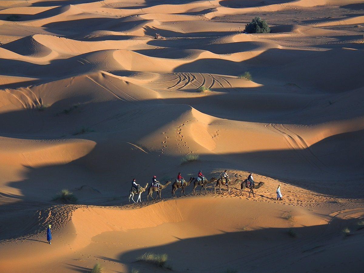 瑰麗壯闊、連綿不絕的沙丘,是撒哈拉最讓人印象深刻的自然景觀。