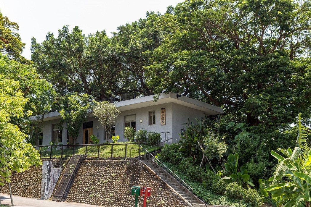 座落山丘的大樹書房有百年茄苳與榕樹掩映