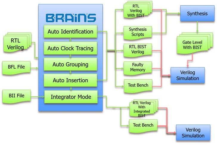 BRAINS 操作流程圖。 HOY/提供