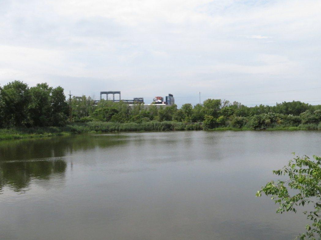 美國法拉盛溪水域呈深綠色,污染嚴重。(記者陳小寧/攝影)