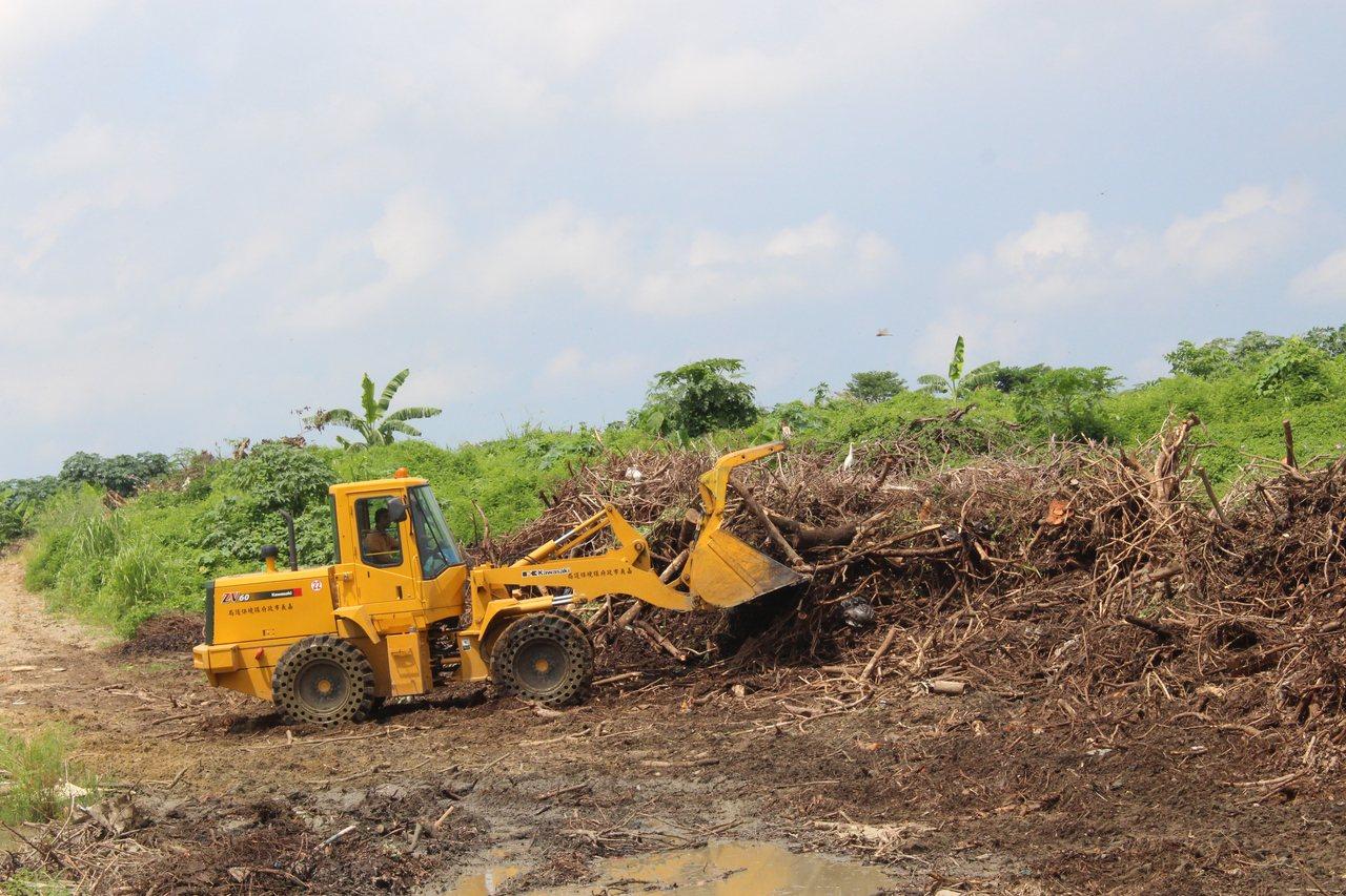 嘉義市府成立木材平台,修剪路樹產生130公噸樹幹、枝,即日起供民眾登記領取。記者...