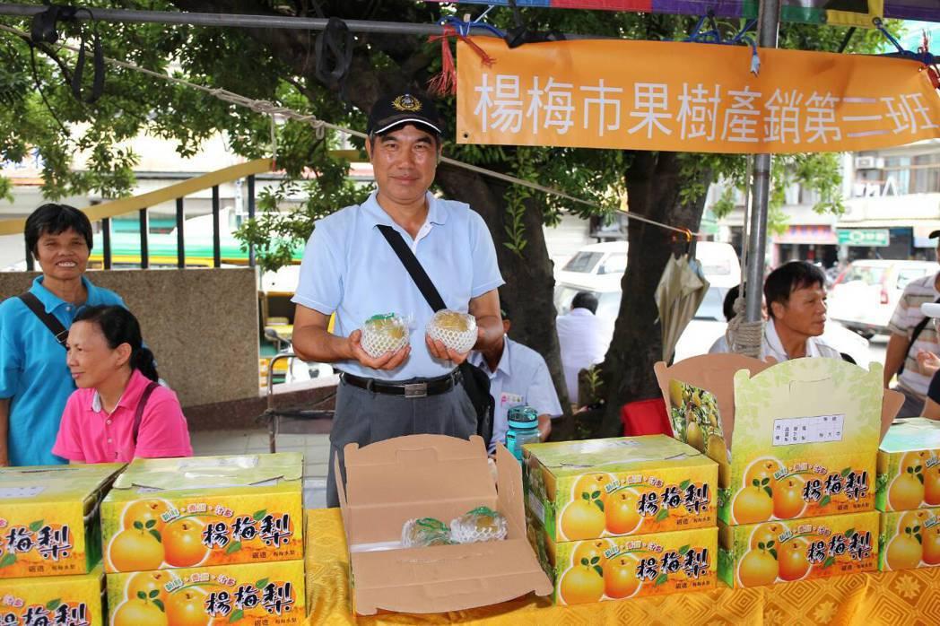 楊梅農特產品今天下午展銷。圖/楊梅區公所提供