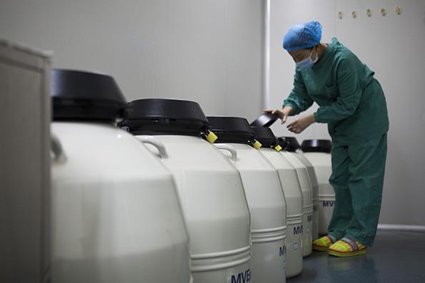 低溫造成不可逆損傷,人體冷凍技術仍待突破。 取自澎湃新聞