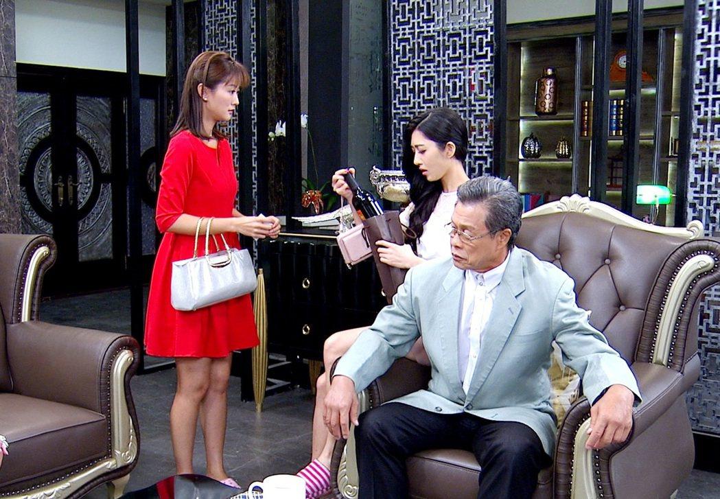 陳珮騏(左)在一家人中面臨公媳問題。圖/三立提供