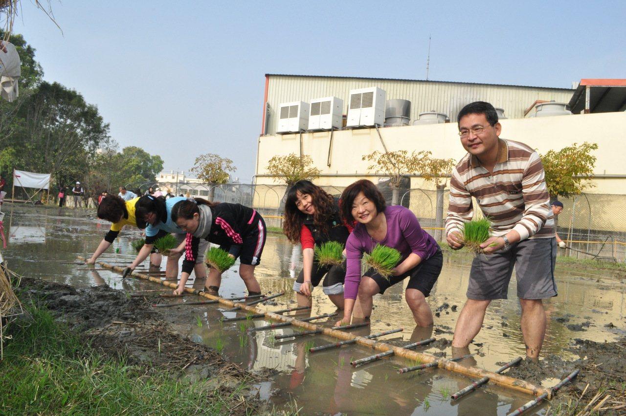 彰化縣螺陽國小前校長張鴻章和小朋友在學校稻田整理田地。 圖/張鴻章提供