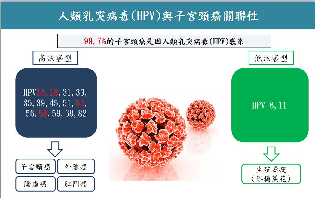 人類乳突病毒(HPV)感染力極強,持續感染,可能引發子宮頸癌、外陰癌、陰道癌、肛...