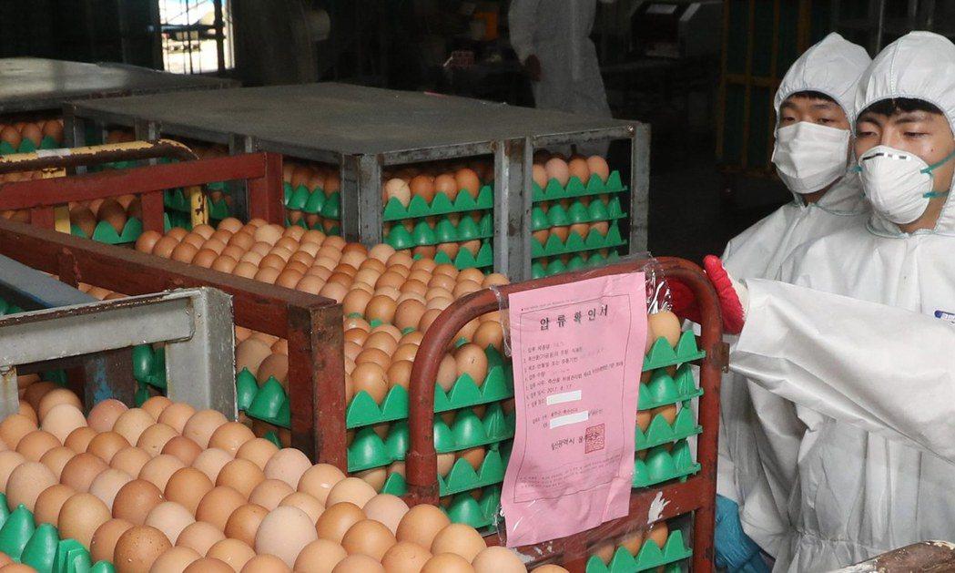 南韓全國有1/5的問題雞蛋,出自這些曾在農畜食品部任職的人,所經營的檢驗公司的疏...