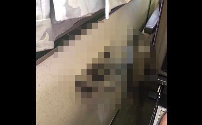 圖片來源/爆廢公社