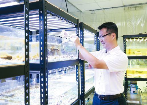 工研院與中山大學、國立海洋生物博物館合作,已找出成功繁殖珊瑚的生長環境條件,能順...