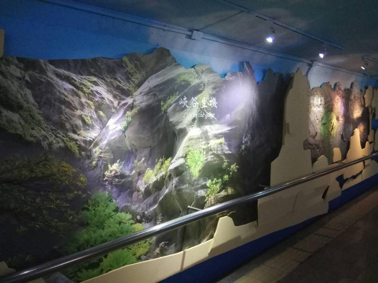 造訪花蓮的遊客只要一下火車,就像「走進太魯閣」。記者徐庭揚/攝影