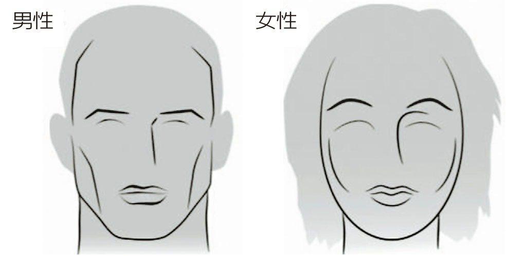 男性與女性的臉龐大不同,男性臉部的骨骼架構較為方正,女性則較為圓滑。 圖/陳建宗...