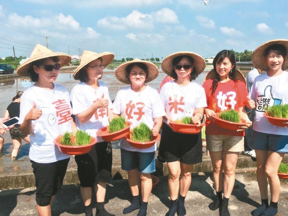 台南市稻田彩繪,昨天由農會女總幹事們下田插秧。 記者吳政修/攝影