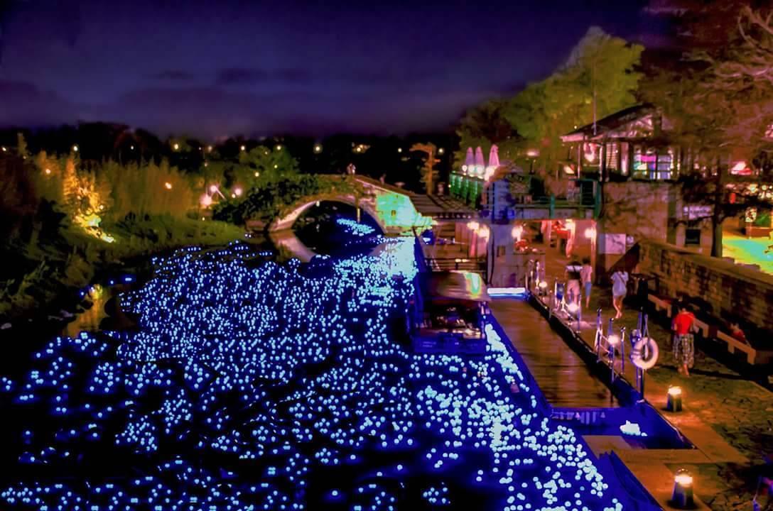 國立傳藝中心宜蘭園區的月河綻放藍光,交織成動人的「藍眼淚」。 圖/陳錫堅攝影提供