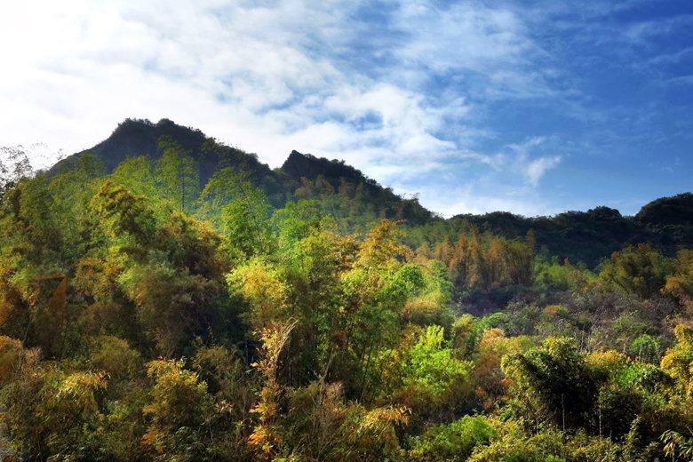 從風水地理上而言馬頭山是中央山脈餘脈理、正對大廟內門紫竹寺應是地方重要的風水寶地。 圖/台南都龍脈誌吳明憲老師提供
