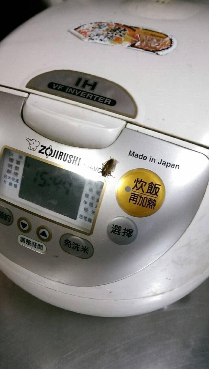 不少民眾或餐飲業者經常在廚房放置紙板、紙箱,卻不知紙箱是蟑螂最愛的產卵環境,就連...