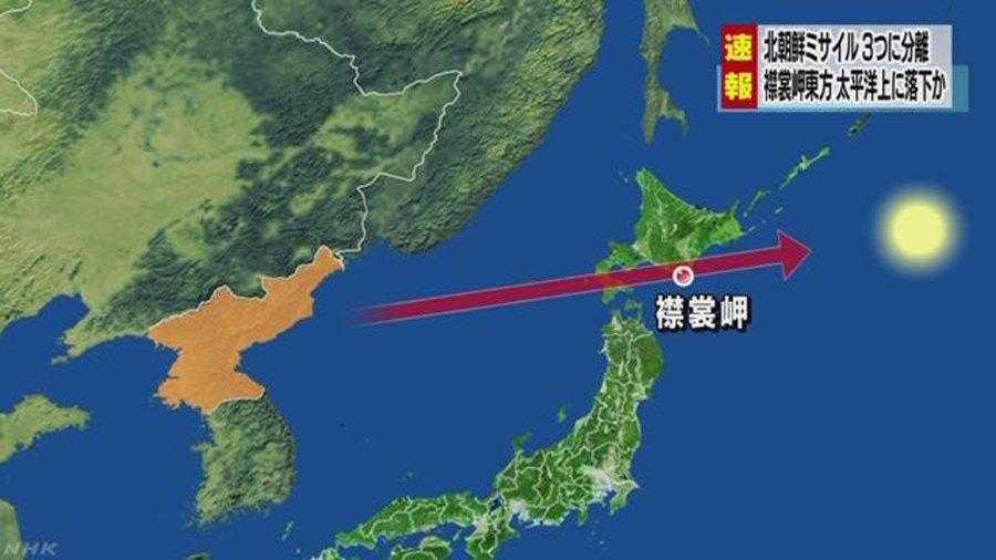 圖擷自NHK NEWS WEB