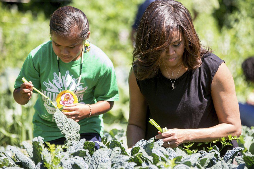 蜜雪兒在白宮闢了一個菜園,梅蘭妮亞保留下來。 (美聯社)