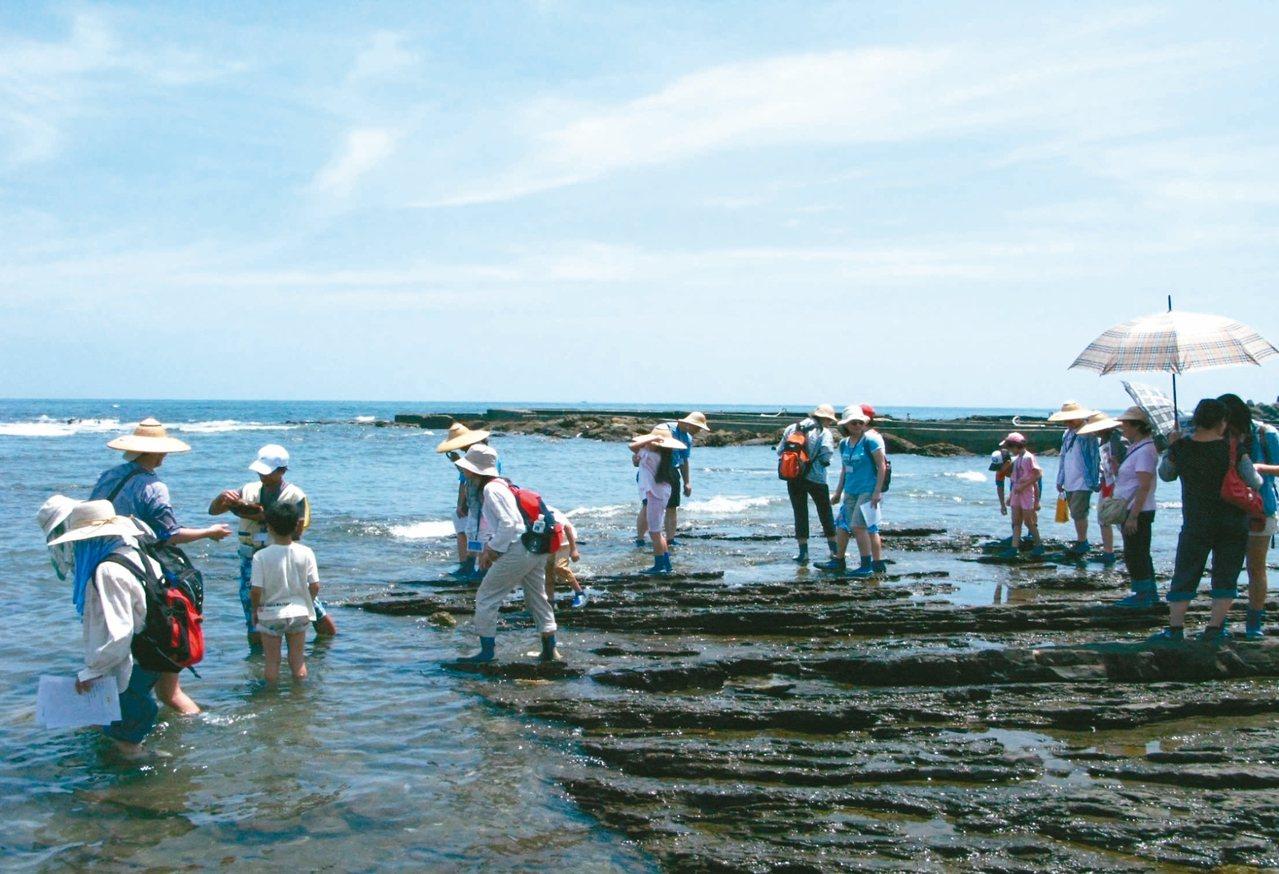 馬崗潮間帶有豐富的生態資源。 圖/新北市漁業處提供