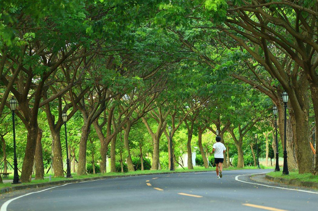 高雄大學城公園綠地比高。 圖片提供/友友建設