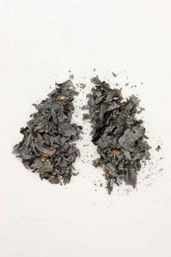 台灣每年肺癌新增人數超過萬人,其中九成屬於非小細胞肺癌,如果基因未突變無法使用標...