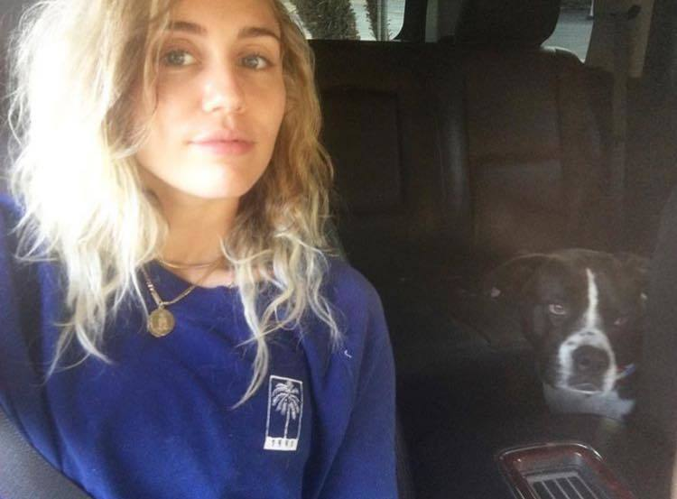 麥莉希拉捐逾千萬賑災。圖/擷自Miley Cyrus臉書