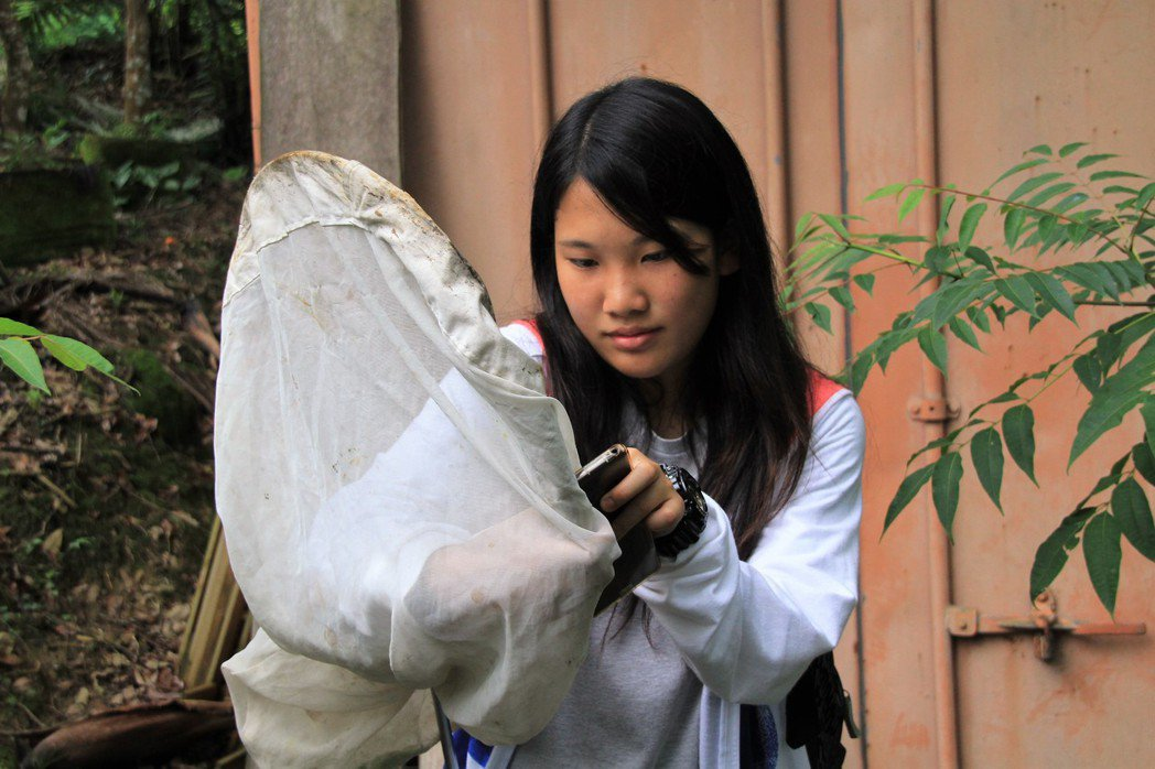 陳亭予因為介紹蝴蝶、擔任解說員,讓她說話更有條理, 記者卜敏正/攝影