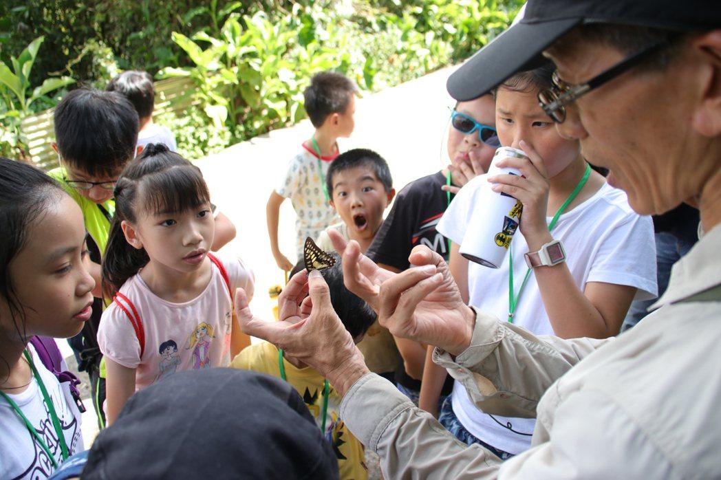 民間團體也有計畫的復育蝴蝶,台灣蝴蝶保育學會資深講師黃行七(右),輕輕抓著1隻木...
