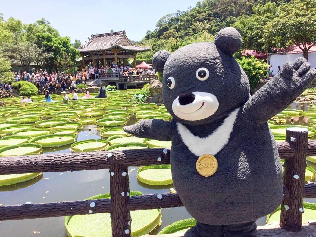 熊讚不僅賣力宣傳世大運,也走遍台北美景。 圖/取自熊讚粉絲頁