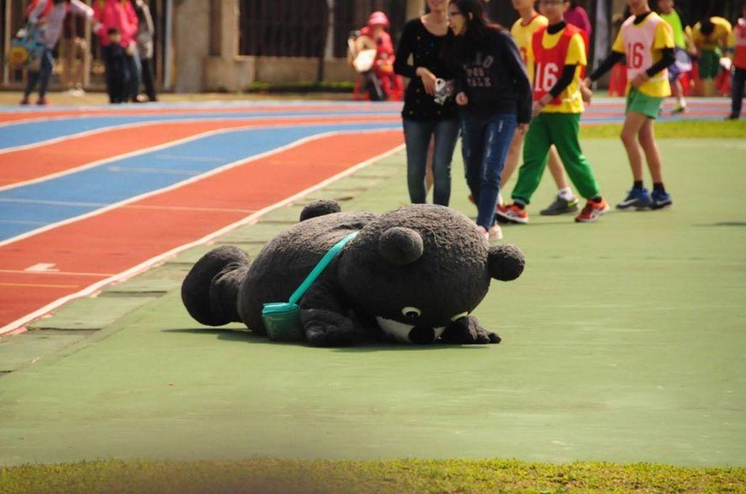 熊讚只要不小心撞到障礙物,就會跌得四腳朝天。 圖/取自熊讚粉絲頁