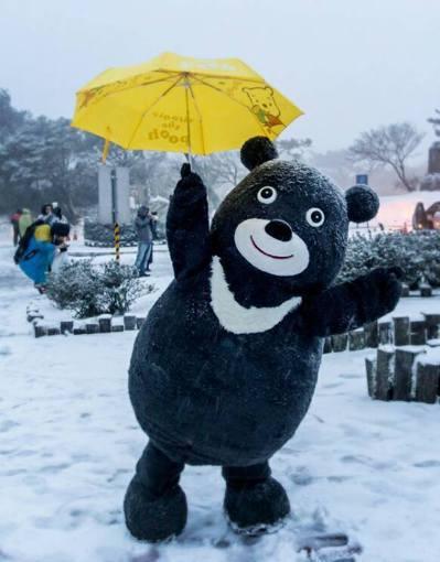 去年陽明山下雪,是熊讚出道的轉捩點,熊讚4人團隊半夜11時上山守候,如願堵到電視...