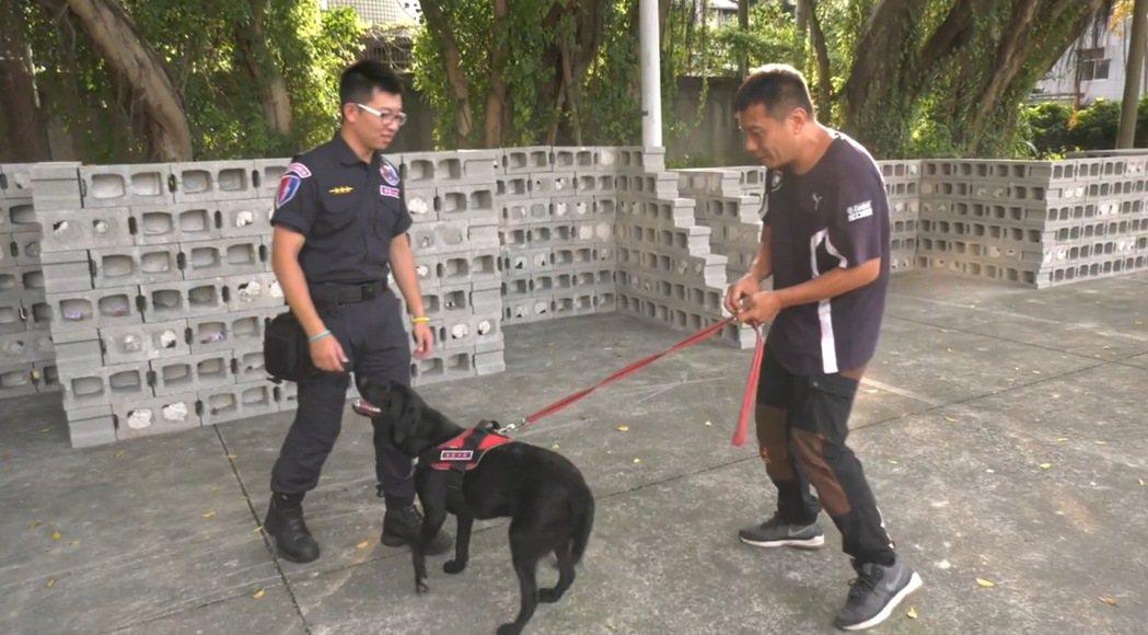 香港教練林偉斌(右)教台中市保大特警訓練犬隻。圖/台中市警局提供