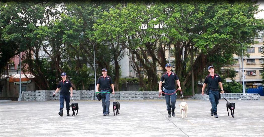 台中市警犬隊目前有4隻警犬、4名特警擔任訓犬員。圖/台中市警局提供