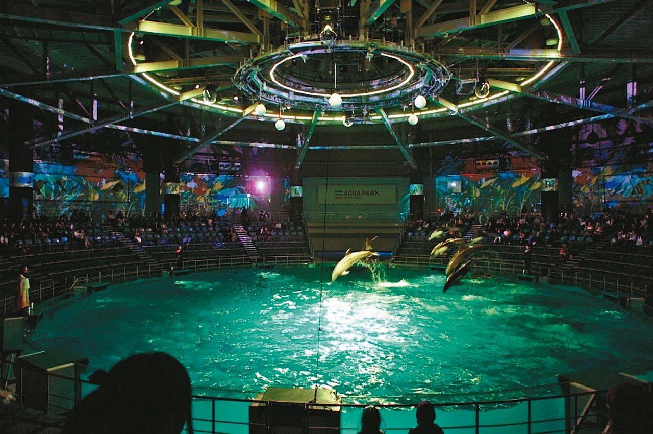超人氣海豚表演充滿魄力又令人感動,震撼力十足。 Aqua Park品川水族館/提...
