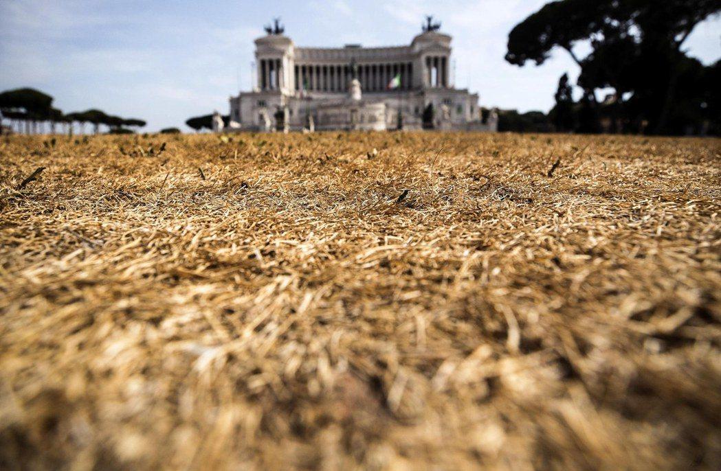 義大利的夏季,正進入前所未見乾燥的一年。 圖/路透社