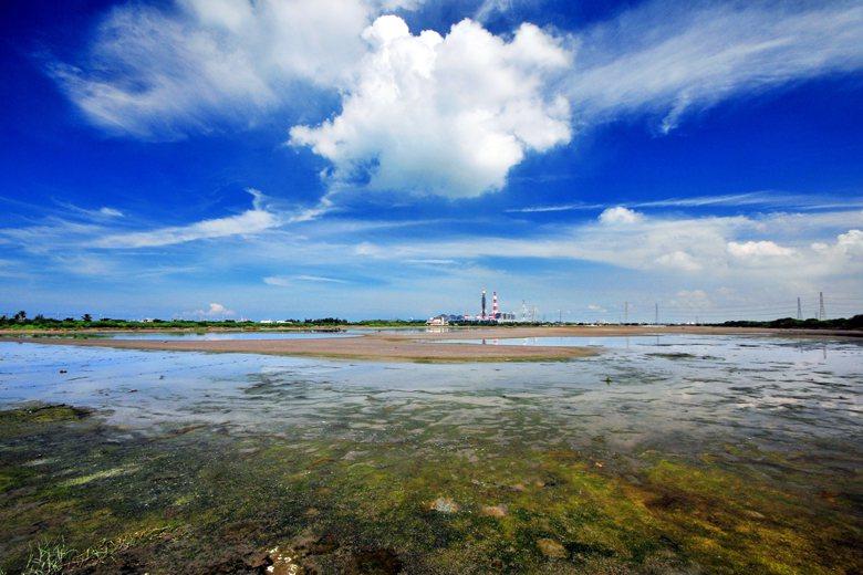 永安濕地是茄萣濕地的重要衛星棲地,共同支持為數龐大的候鳥族群。 圖/高雄市政府提供