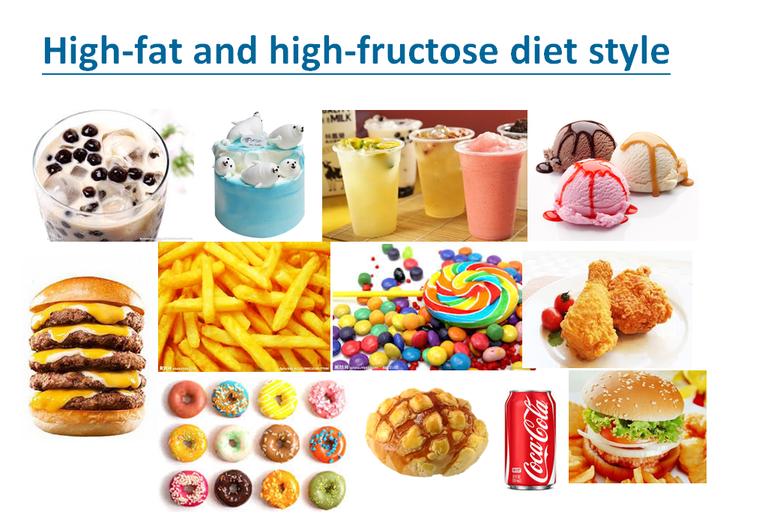 三軍總醫院實驗證實,高油脂、高果糖的飲食型態會影響男性生殖能力。圖/翻攝自曹智惟...